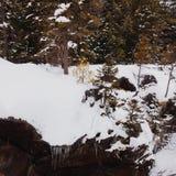 冻结瀑布 库存图片
