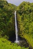 瀑布Akaka秋天国家公园 库存照片