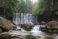 瀑布Dziki在卡尔帕奇, Karkonoszy,波兰 库存照片