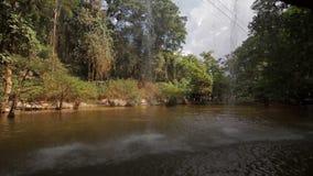 瀑布n Prenn公园大叻市越南 股票视频