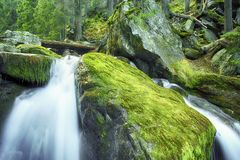瀑布Rosiile 库存图片