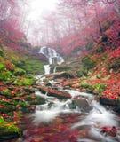 瀑布Shepit横过喀尔巴阡山脉 免版税库存照片