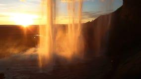 瀑布Skogafoss在冰岛 股票视频