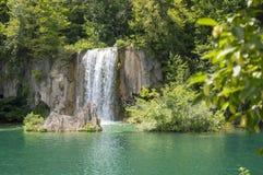 瀑布Trees湖Plitvice 免版税库存照片