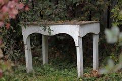 灌木和一张白色庭院桌的绯红色叶子 图库摄影
