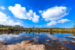 灌木和树风景在一个干盐湖附近有一点的水在前景 免版税库存照片