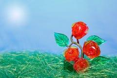 灌木生长玫瑰色星期日 库存照片