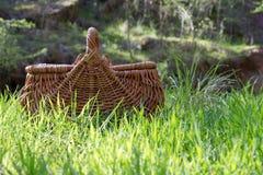 灌木野餐 免版税库存照片