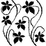 灌木 背景灌木花卉无缝的向量 免版税图库摄影