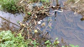 灌渠 库存图片