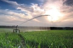 灌溉三 免版税图库摄影