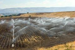灌溉在以色列 免版税图库摄影