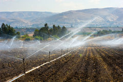 灌溉在以色列 库存照片