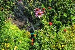 灌溉工作的浪花在庭院里 免版税库存照片