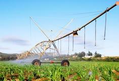 灌溉枢轴系统 库存照片