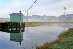 灌溉池塘薄雾 库存照片