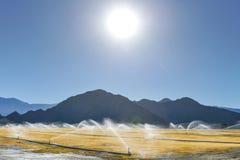 灌溉由山装喷水器水一个干燥领域 免版税库存图片
