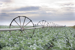 灌溉系统 免版税库存图片