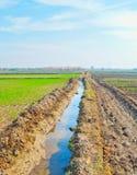 灌溉运河 免版税库存图片