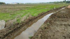 灌溉运河 库存图片