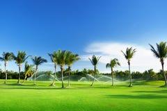 灌溉高尔夫球场 免版税图库摄影