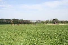 灌溉系统的油井桥梁 库存照片