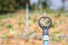 灌溉系统 库存图片