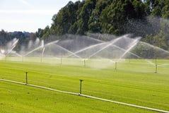 灌溉 免版税库存图片