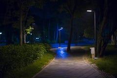火光步行 免版税图库摄影