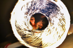 火光环在灼烧的人节日的 免版税库存照片