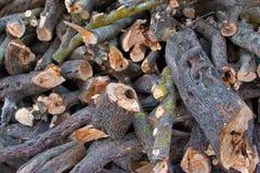 火冬天木头 库存图片