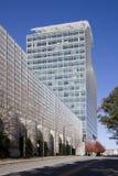 火加标点的结构树 免版税库存照片