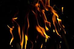 火发火焰汇集 库存图片