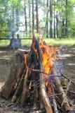 火在一个森林里在休闲区域 库存图片