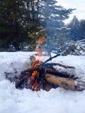 火在冬天森林里 库存照片