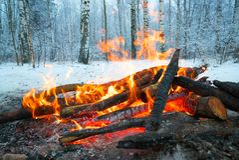 火在冬天森林 免版税库存图片