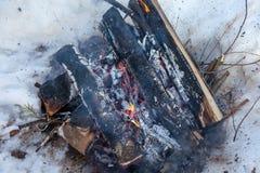 火在桦树木头雪的冬天森林里  库存图片