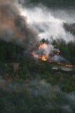火在野火森林里  库存照片
