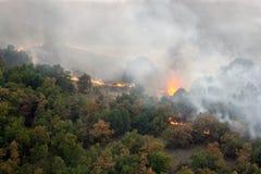 火在野火森林里  免版税库存图片