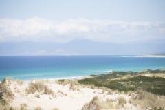 火塔斯马尼亚岛美丽的风景海岸海湾  库存图片