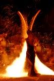 火展示16 库存照片