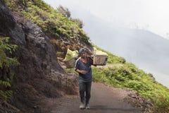 从火山口伊真火山, Java的矿工运载的硫磺 库存照片