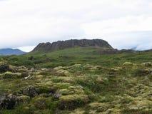 火山口冰岛 免版税库存图片