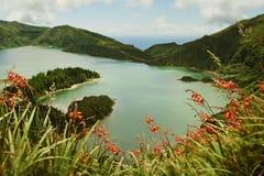 火山口火山湖和花惊人的风景视图在圣地亚速尔群岛的米格尔isla 库存照片