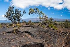 火山国家公园夏威夷 库存照片