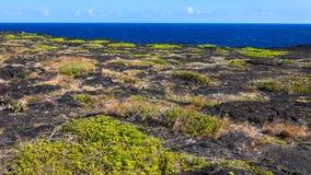 火山国家公园海岸 免版税库存图片