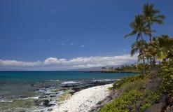 火山夏威夷的岸 库存图片