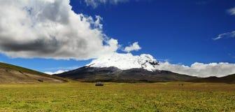 火山安蒂萨纳火山(厄瓜多尔)的全景图片 免版税库存照片