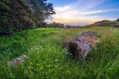 火山岩在草甸 库存图片