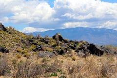 火山岩悬崖 库存照片